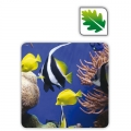 Tappetino mouse ECO EARTHSERIES fan. sotto il mare
